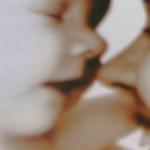 Screen Shot 2021-07-08 at 12.18.40 PM